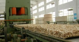 How Oriented Strand Board (OSB) is made