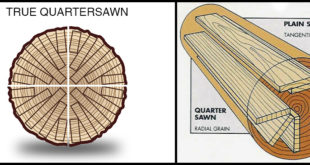 What is Quarter Sawn Wood?